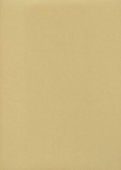 "Papier uni ""Ingres Hahnemühle"" beige (48x62,5)"