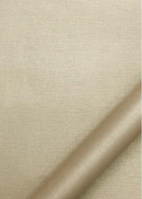Papier nacré doré (70x100)