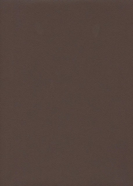 "Papier imitation cuir ""galuchat"" expresso (50x65)"