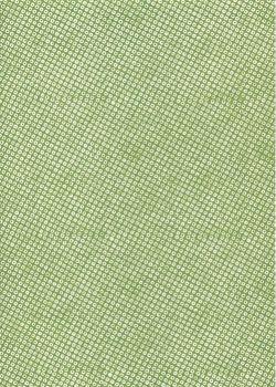 Véritable Yuzen (52x65.5) N°02-4