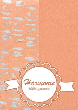 HARMONIE DUO Collection de plumes argent fond saumon
