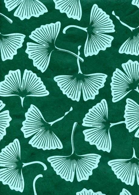 Lokta feuilles de Ginkgo biloba fond vert (50x75)