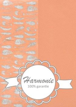 HARMONIE DUO Plumes argent fond saumon