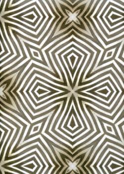 Impression zèbre (50x70)