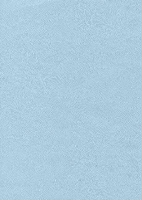 """Simili cuir """"Buffalo"""" bleu tendre (70x100)"""