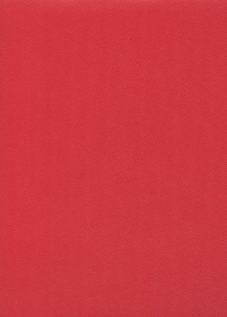 Skip grain fin framboise n°23 (65x100)