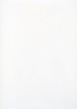 Skip Moleskine blanc n°08 (65x100)