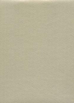 Skip grain or pâle n°20 (65x100)