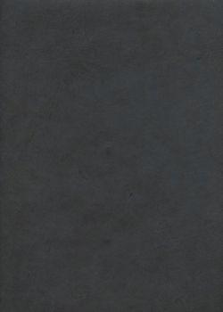 Papier lokta gris anthracite (50x75)
