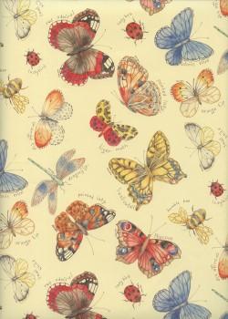 Planche de papillons (49,5x68)