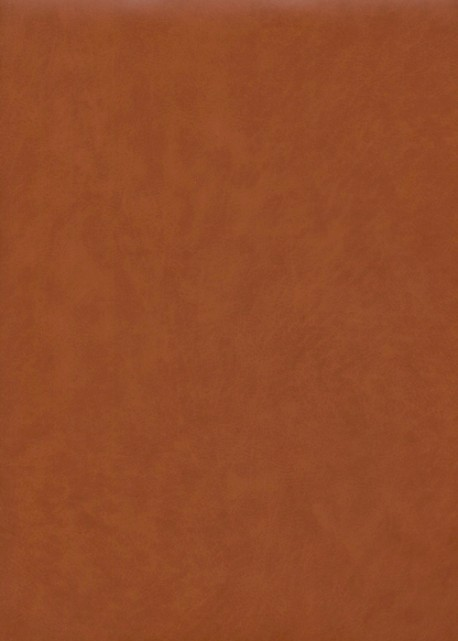 "Papier imitation cuir ""mat"" camel (50X65)"