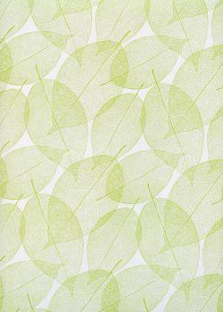 "Empreintes de feuilles vertes fond blanc"" (68x98)"