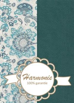 HARMONIE DUO Cachemire 2 tons bleus