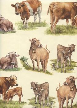 Les vaches (70x100)