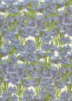 Les oeillets bleus (70x100)