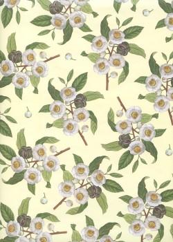 Les branches en fleur sur fond vanille (70x100)
