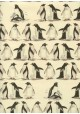 Les manchots (70x100)