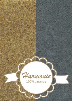 HARMONIE DUO Rondanlo or fond gris anthracite