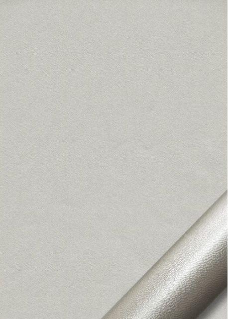 """Papier """"grain fin"""" argent (70x100)"""