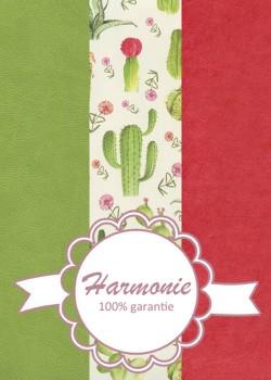 HARMONIE TRIO Pêle-mêle de cactus