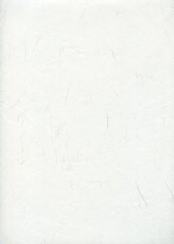 UNRYO NIYODO blanc cassé (49x63,5)