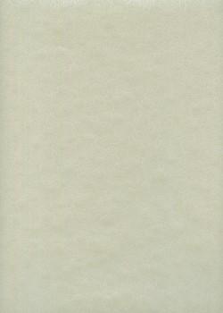 HANA fond gris (54,5x78,5)