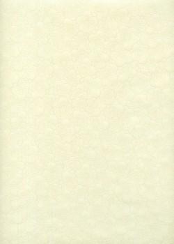 HANA fond ivoire (54,5x78,5)