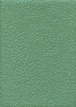 Véritable Momi vert provence (54x78)