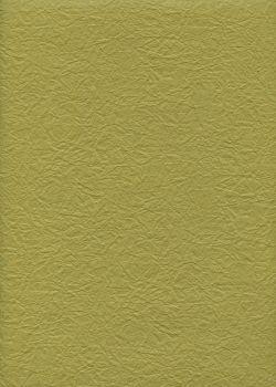 Véritable Momi vert olive (54x78)