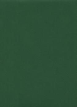 """Papier imitation cuir """"mat"""" vert (50X65)"""