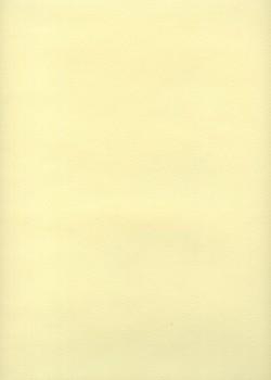 Mi-teintes n°101 citronnelle (50x65)