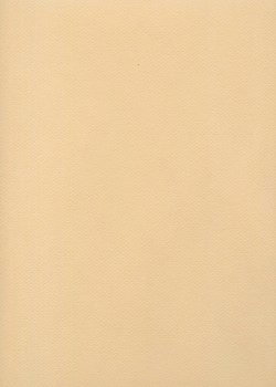 Mi-teintes n°350 rose muraille (50x65)