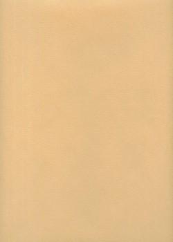"""Papier uni """"Basic"""" beige (50x70)"""