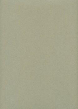 Mi-teintes n°431 gris chiné (50x65)