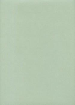 """Papier uni """"Ingres Hahnemuhle"""" vert d'eau (48x63)"""