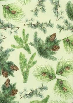 Les branches de sapin fond vert tendre (70x100)