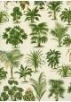 Les plantes vertes (70x100)