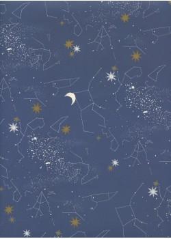 La nuit des étoiles (70x100)