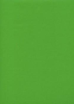 """Simili cuir """"Tonic"""" vert prairie (50x65)"""